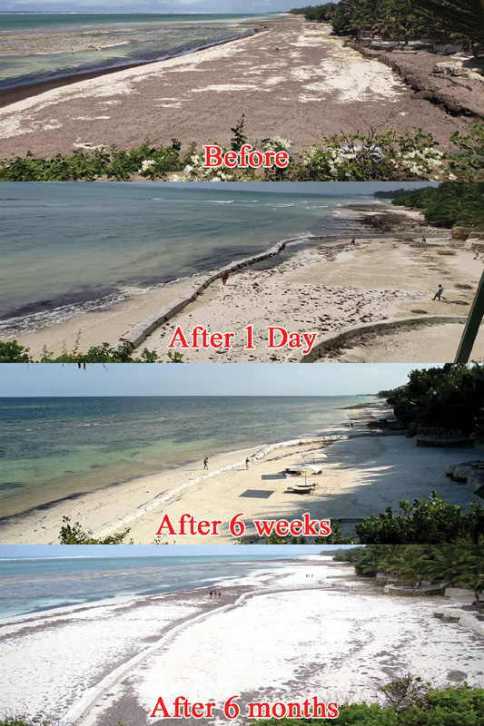 Sandsaver Beach Erosion Solution Before and After Indian Ocean